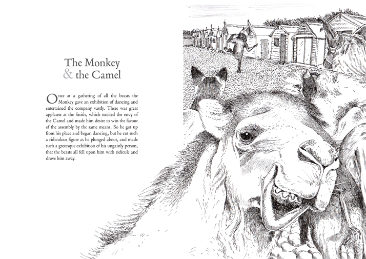 the monkey and the camel Illustrated by Emily Wallis