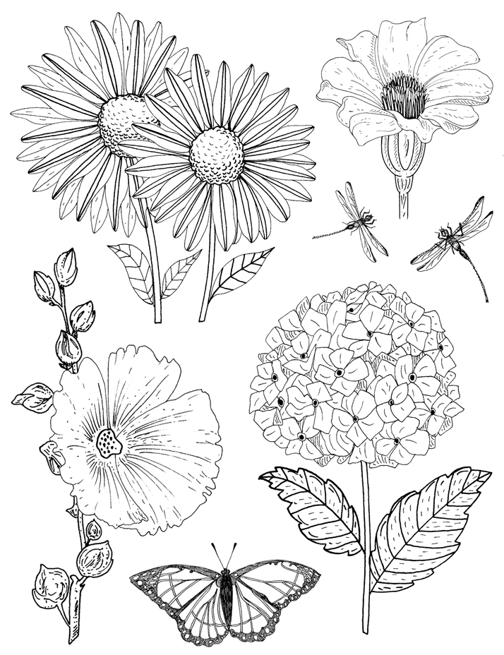 Flower Rubber stamp designs by Emily Wallis