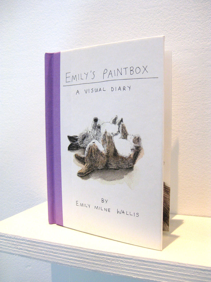 Emily's Paintbox a Visual Diary by Emily Wallis