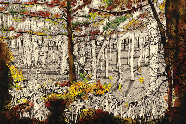 Illustration of trees and a deer in the woods by Emily Wallis