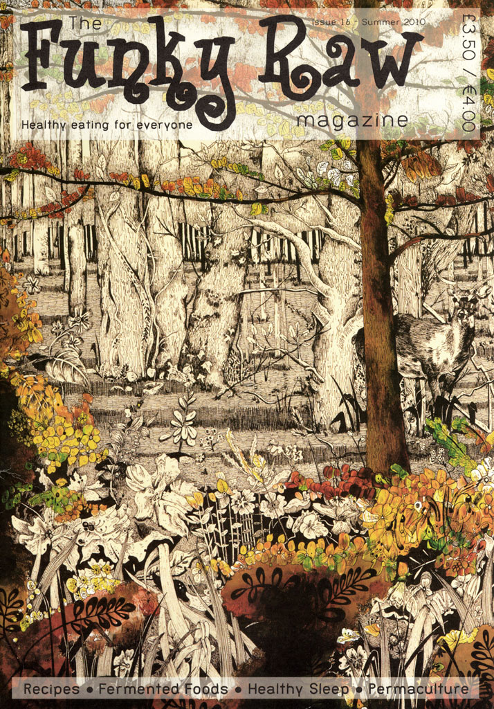 Funky Raw Magazine illustrated front cover deer in the woods by Emily Wallis