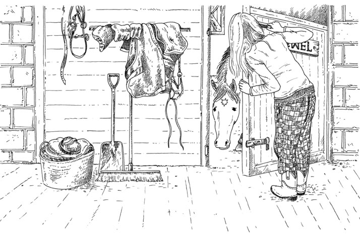 Silver Pony Ranch Sparkling Jewel Interior Illustration