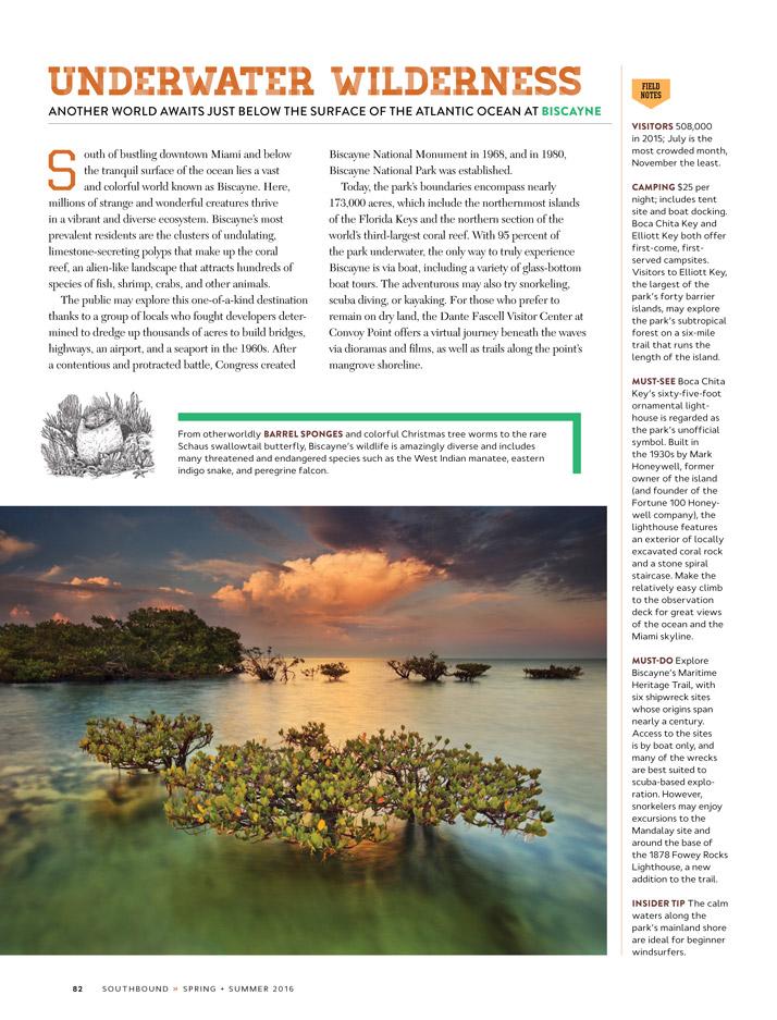 Emily-Wallis-Illustration-for-Southbound-Atlanta-Magazine1