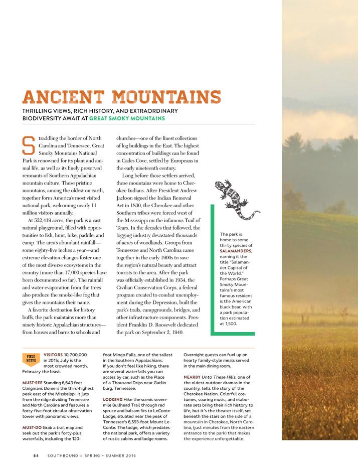 Emily-Wallis-Illustration-for-Southbound-Atlanta-Magazine2