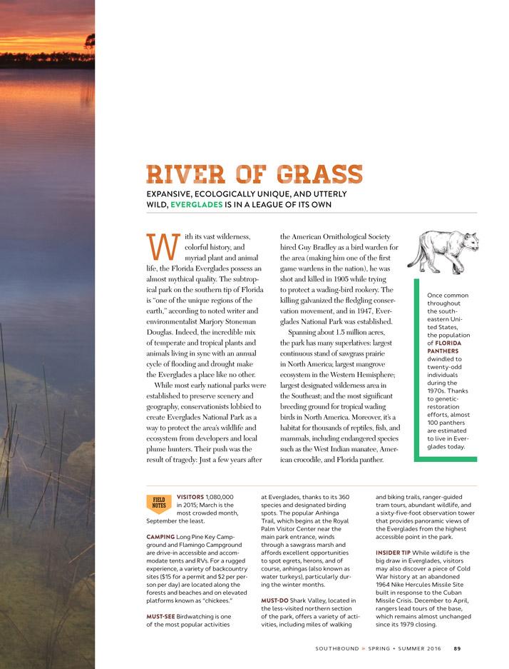 Emily-Wallis-Illustration-for-Southbound-Atlanta-Magazine3