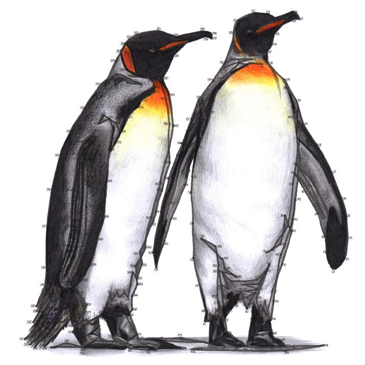 Penguin Dot-to-dot