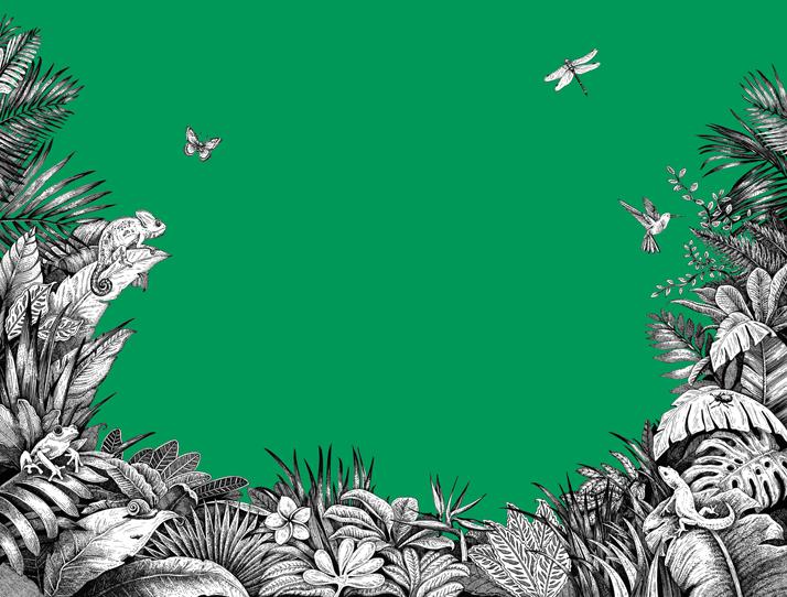 A Journey Through The Jungle, Anti-Stress Dot-to-Dot Book, Emily Wallis