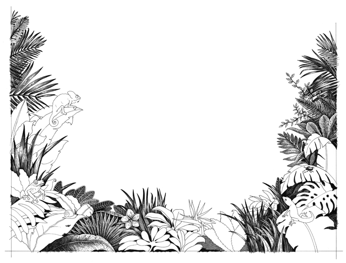 A Journey Through The Jungle dot-to-dot book for adults by Emily Wallis