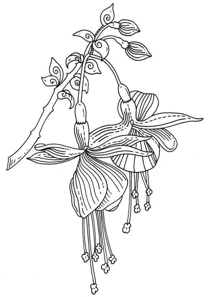 Emily Wallis Illustration Rubber stamp