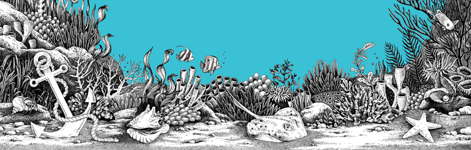 A Sea Voyage - An Anti Stress Dot-to-Dot Adventure Cover Artwork by Emily Wallis