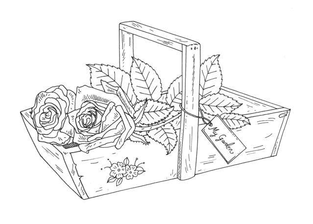 My Garden Rose Basket Illustration