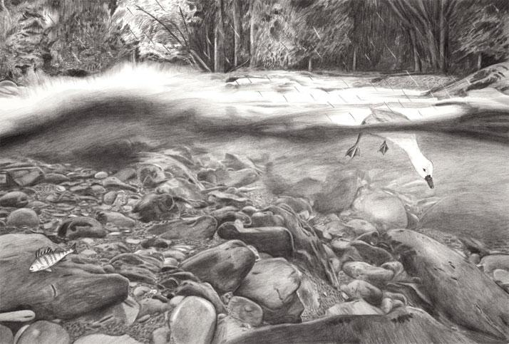 Underwater Illustration pencil drawing