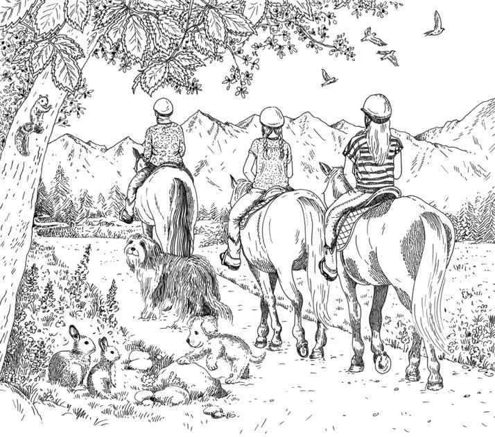 Silver Pony Ranch Sparkling Jewel Interior Illustration