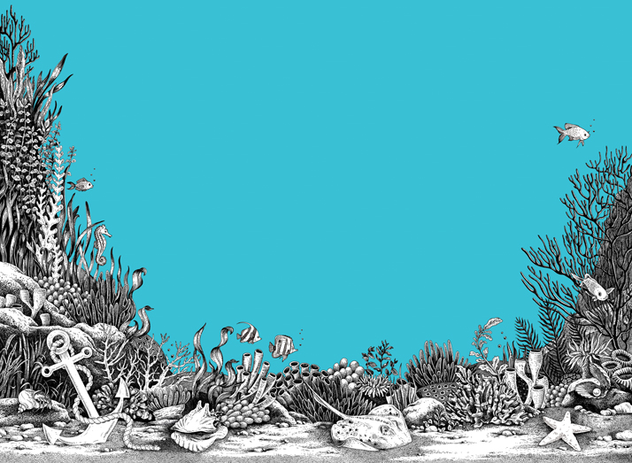 Illustration for A Sea Voyage dot to dot by Emily Wallis